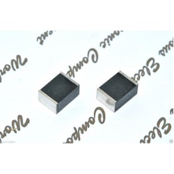 WIMA SMD-PET SC6054 1uF 250V 10% SC6054 SMDTF04100Q100KS00 電容 1顆1標
