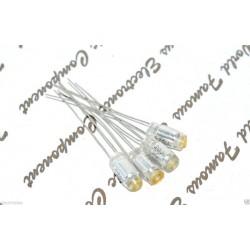 TSC 620p (620pF) 50V 5% Polystyrene (PS) 臥式電容 1顆1標