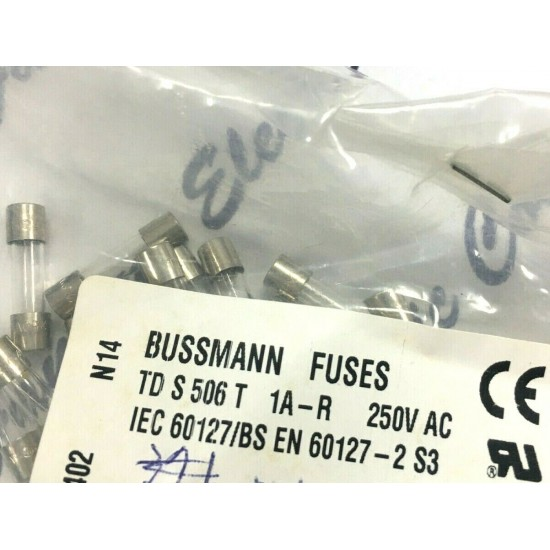 BUSSMANN S506 T 1A 250V AC 20mm 慢融 保險絲 1顆