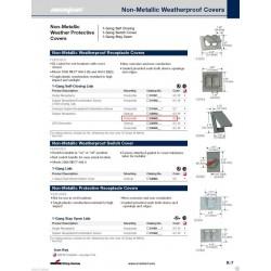 美國 COOPER S3962 塑膠防水面板&蓋板 灰色 (DUPLEX型)